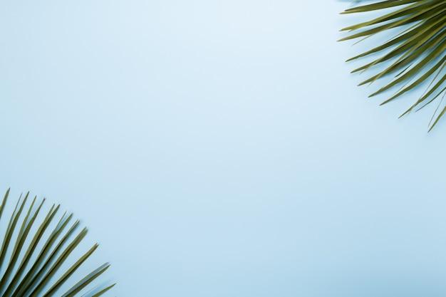 パステルブルーの背景にヤシの葉。トップビュー、夏のコンセプト