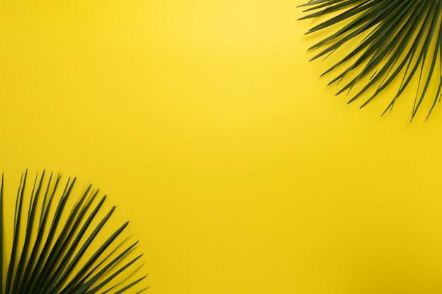黄色の背景にヤシの葉。トップビュー、夏のコンセプト
