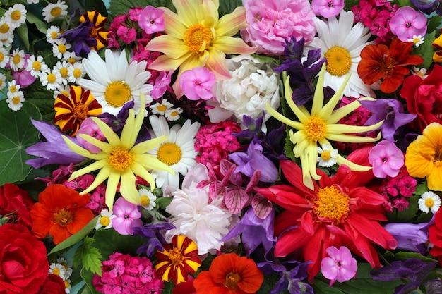 さまざまな花の質感、トップビュー。花の明るい背景。