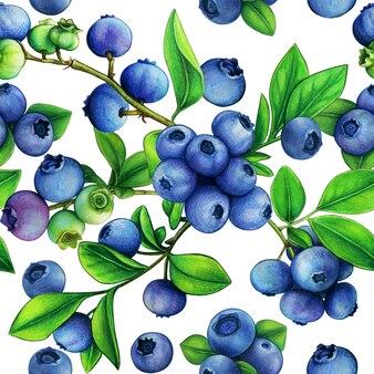水彩ブルーベリー大きなシームレスパターン