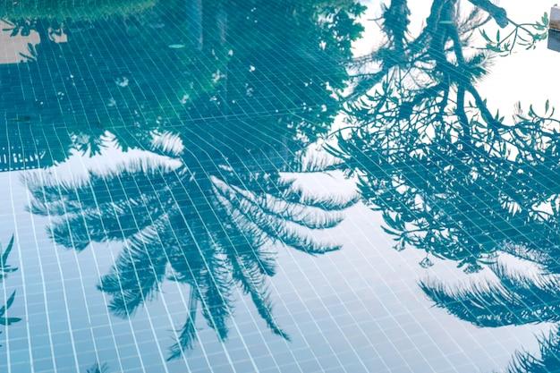 青い水の上のヤシの木の影