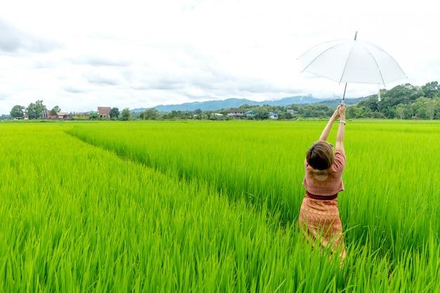タイの女性が緑の田んぼに立つ