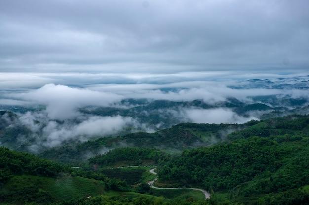パノラマビュー自然風景