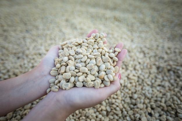 コーヒー豆を保持しているカップ状の手