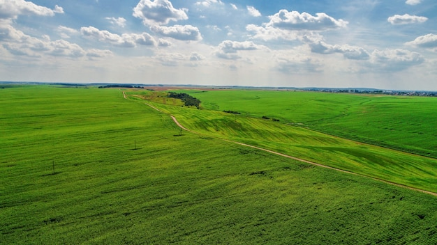 緑の野原にカメラでドローンします。