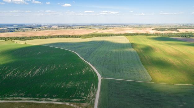 緑の野原はドローンで日没ショットです。