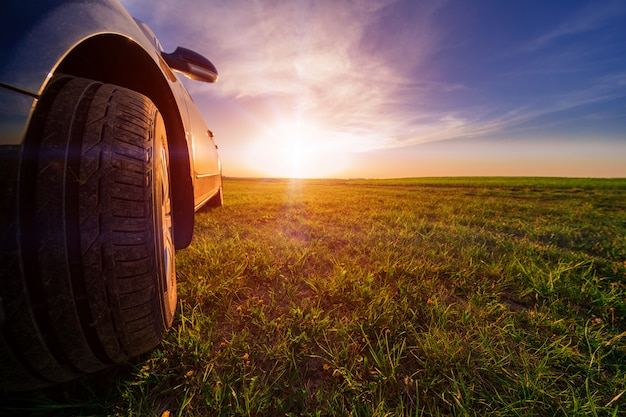ヒマワリと小麦の日光の分野で未舗装の道路上の車