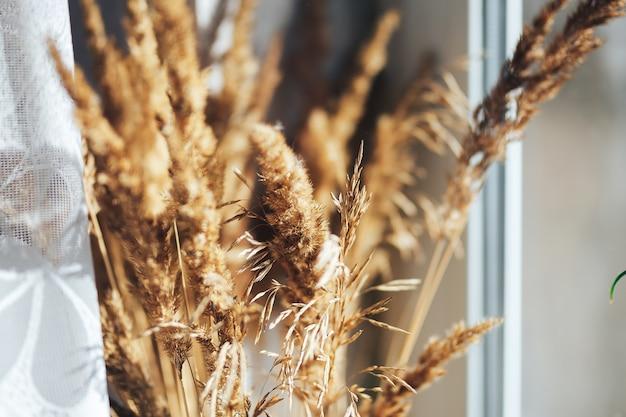 家の中で小麦の穂の束。クローズアップ - 画像