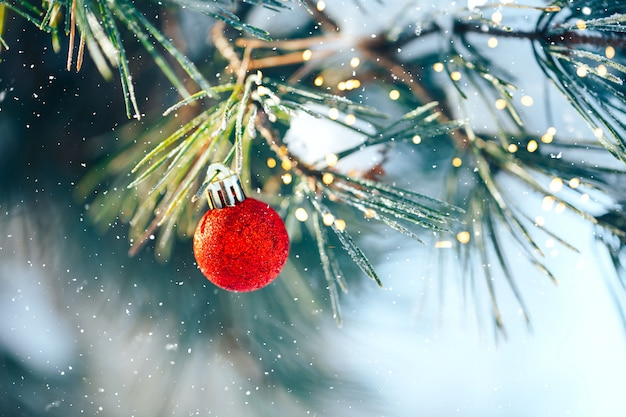 雪のモミのクリスマスボール