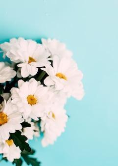 青い背景に白い花びらの花