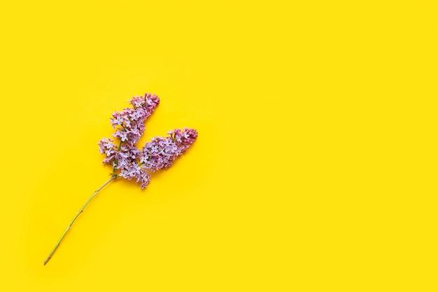 平らな黄色の背景にライラックの花を置きます。紫色の花と葉の平面図です。