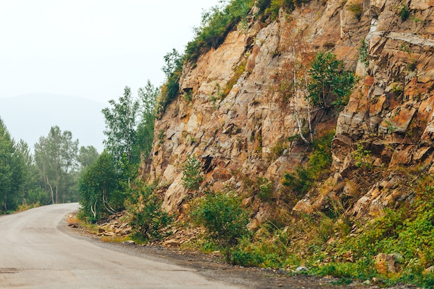 Сырая дорога с горной скалой и зелеными деревьями