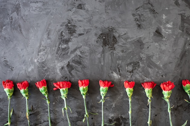 赤いカーネーションの花のボーダーまたは灰色の背景に赤いカーネーションを持つフレーム