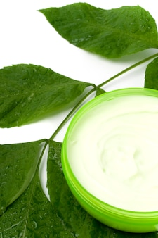 白い背景の上の緑の葉とフェイスクリーム