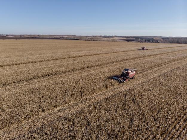 高所からトウモロコシ畑のトラクターを収穫する