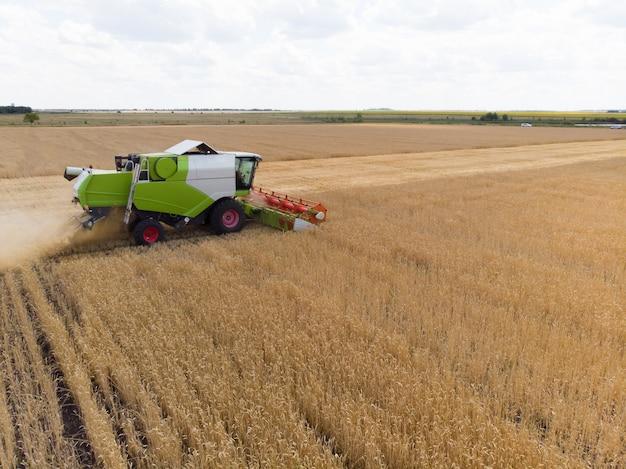 夏の小麦の収穫。フィールドで黄金の熟した小麦を収集するハーベスタ農業機械を組み合わせます。上からの眺め。
