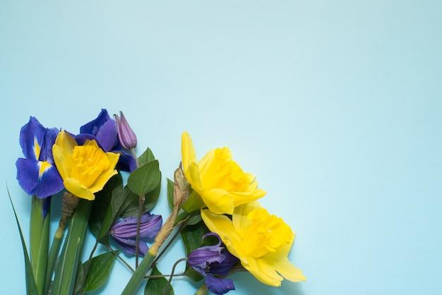 青色の背景色の花