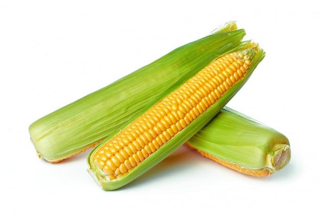 Кукуруза, изолированные на белом