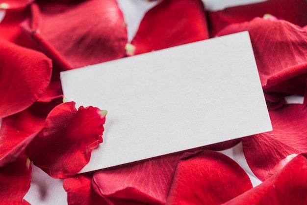 バラと木の板に心