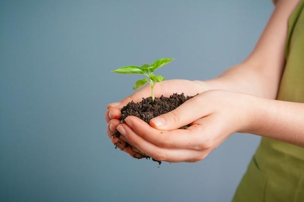 彼女の手のひらの上で緑の植物を保持している女性のクローズアップショット。閉じる