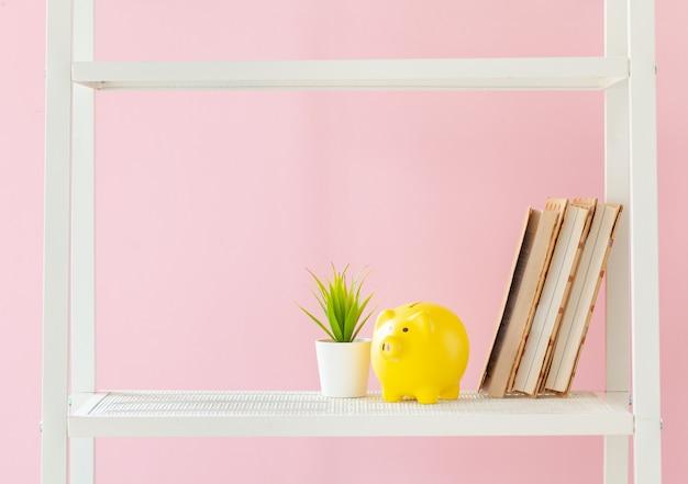 本とピンクの壁に対して植物の白い本棚