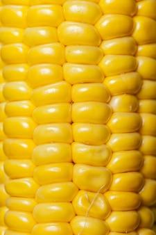 Кукурузный узор фона