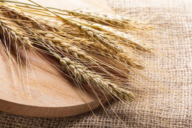 荒布を着た小麦の耳