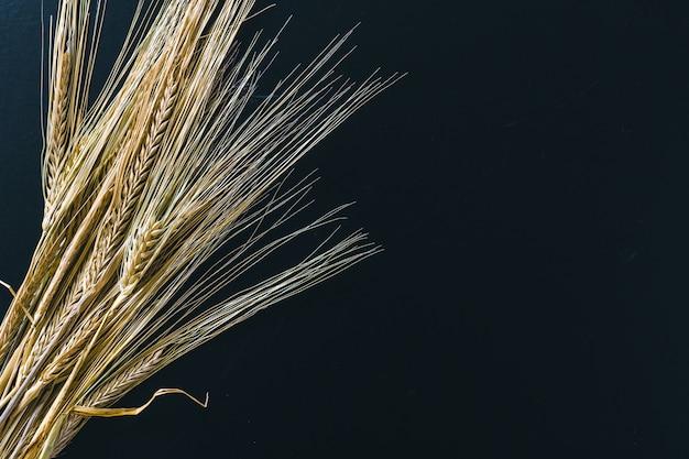 黒い木に小麦の穂