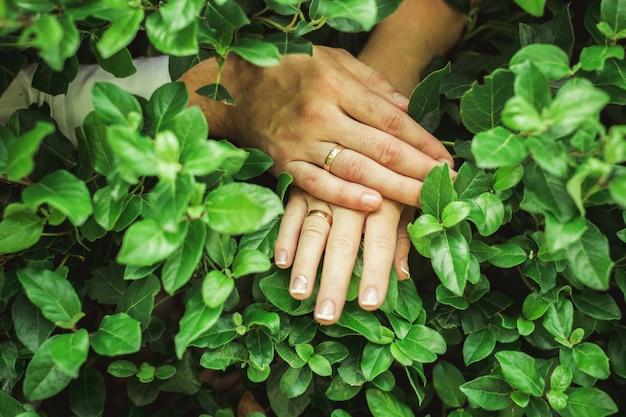 結婚指輪と婚約指輪を備えた新郎新婦の手