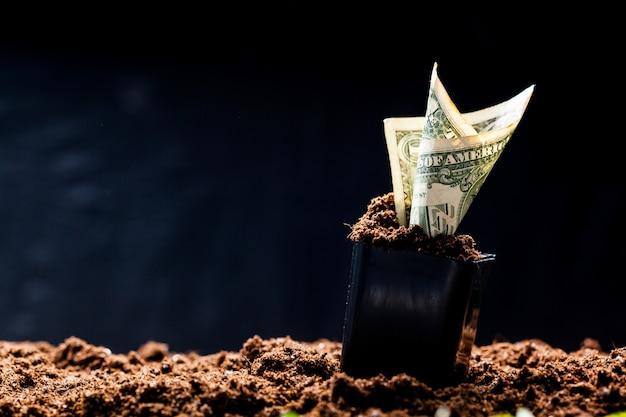 アメリカドルは地面から成長する