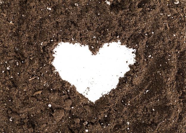 土壌や汚れのセクションが白い背景で隔離