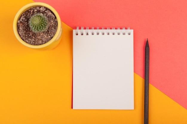 多肉植物と空白のノートブック紙