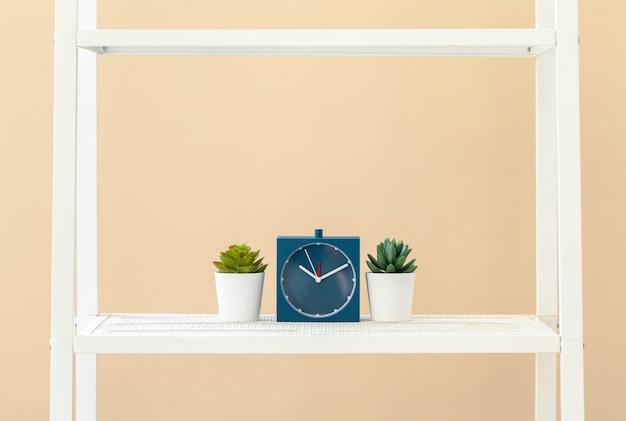 ベージュの壁に鍋に植物と白い本棚