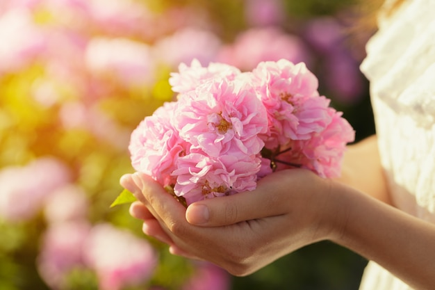 Женщина, держащая розы крупным планом. летний сезон.