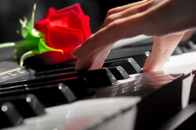 Красные розы на клавишах пианино