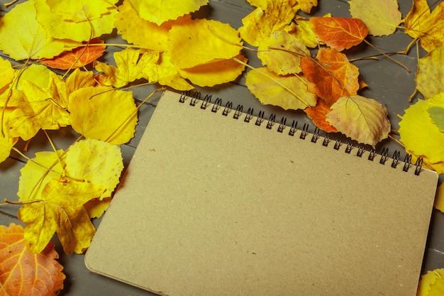 色鮮やかな紅葉と木製の表面上のノート
