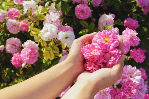 Женщина удерживания цветков
