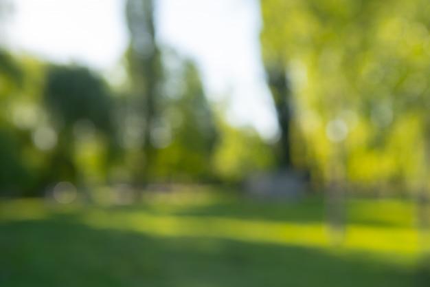 背景の抽象的なぼかし都市公園ボケ