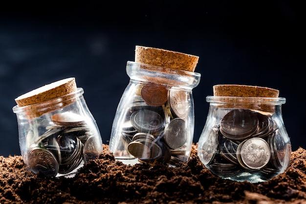 貯蓄コインで成長する植物-投資と関心の概念