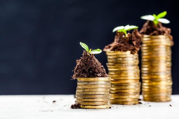 若い植物が付いている土の黄金のコイン。お金の成長の概念。