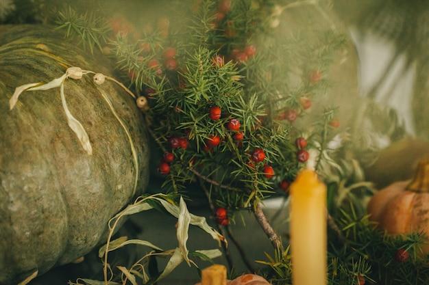 Деревенская осенняя обстановка с тыквами крупным планом