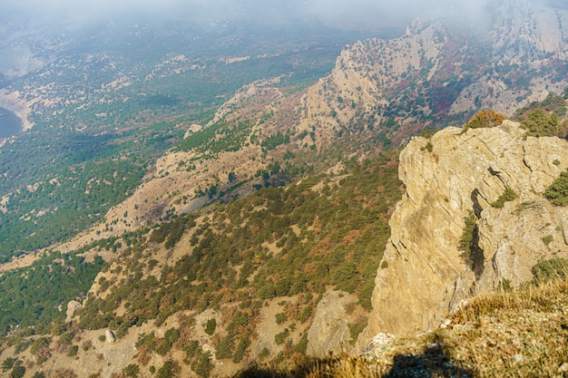Красивая гора с лесами на фоне утреннего тумана