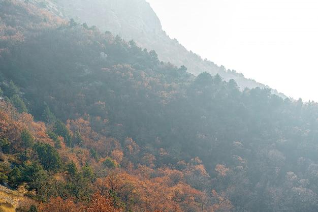 Осенний сельский пейзаж с горами и лесами, покрытыми утренним туманом