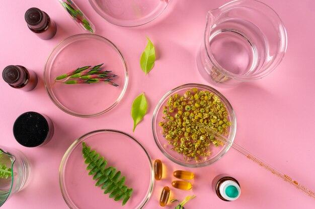Травы и травяные пищевые добавки вид сверху