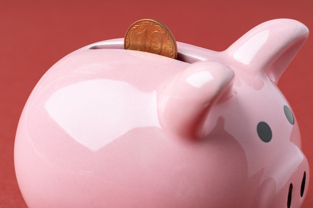 ウクライナのお金で貯金箱貯金箱