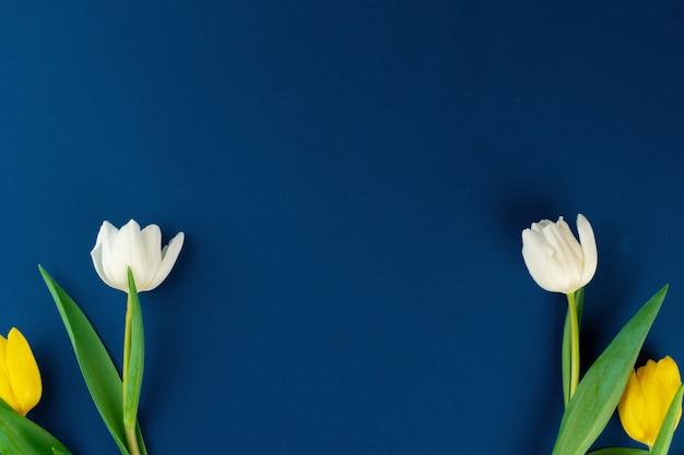 Свежий цветок на классическом синем фоне, копия пространства, вид сверху