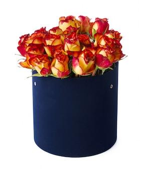 Красные и желтые розы в изолированной шляпной коробке