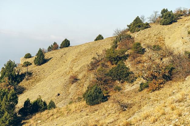 マウンテンバレーの石の風景の背景の写真