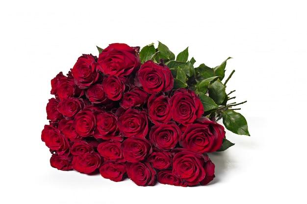 白地に赤いバラ。