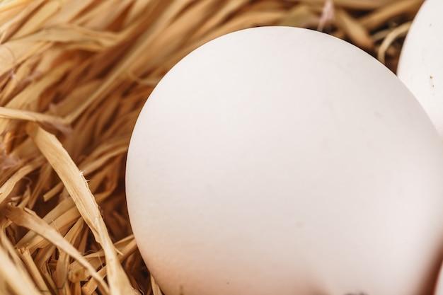 木製のテーブルに干し草の巣の卵